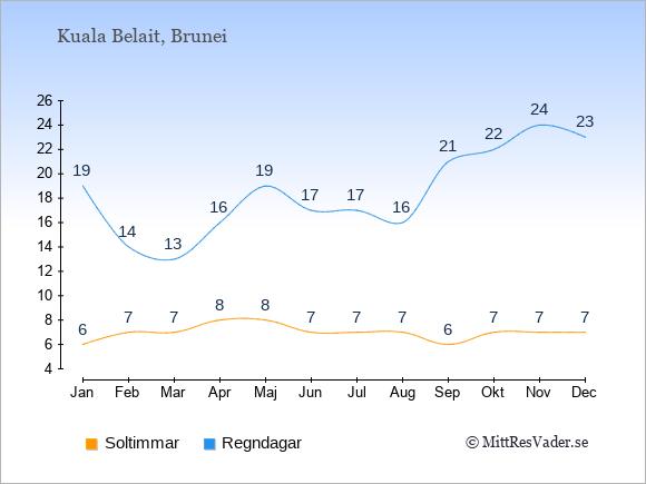 Vädret i Kuala Belait exemplifierat genom antalet soltimmar och regniga dagar: Januari 6;19. Februari 7;14. Mars 7;13. April 8;16. Maj 8;19. Juni 7;17. Juli 7;17. Augusti 7;16. September 6;21. Oktober 7;22. November 7;24. December 7;23.
