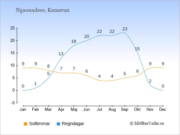 Vädret i Ngaoundere exemplifierat genom antalet soltimmar och regniga dagar: Januari 9;0. Februari 9;1. Mars 8;5. April 7;13. Maj 7;18. Juni 6;20. Juli 4;22. Augusti 4;22. September 5;23. Oktober 6;15. November 9;2. December 9;0.