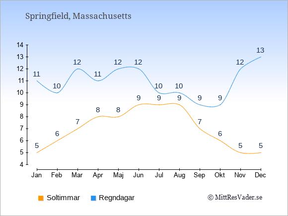 Vädret i Springfield exemplifierat genom antalet soltimmar och regniga dagar: Januari 5;11. Februari 6;10. Mars 7;12. April 8;11. Maj 8;12. Juni 9;12. Juli 9;10. Augusti 9;10. September 7;9. Oktober 6;9. November 5;12. December 5;13.