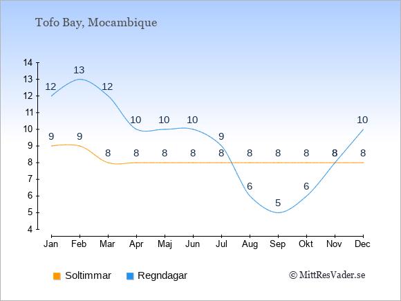 Vädret i Tofo Bay exemplifierat genom antalet soltimmar och regniga dagar: Januari 9;12. Februari 9;13. Mars 8;12. April 8;10. Maj 8;10. Juni 8;10. Juli 8;9. Augusti 8;6. September 8;5. Oktober 8;6. November 8;8. December 8;10.
