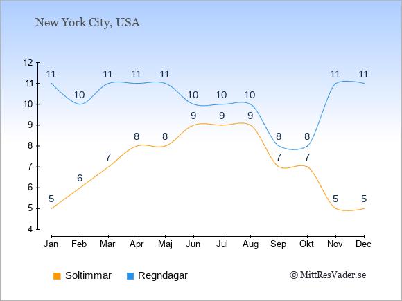 Vädret i New York exemplifierat genom antalet soltimmar och regniga dagar: Januari 5;11. Februari 6;10. Mars 7;11. April 8;11. Maj 8;11. Juni 9;10. Juli 9;10. Augusti 9;10. September 7;8. Oktober 7;8. November 5;11. December 5;11.