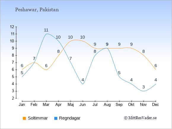 Vädret i Peshawar exemplifierat genom antalet soltimmar och regniga dagar: Januari 6;5. Februari 7;7. Mars 6;11. April 8;10. Maj 10;7. Juni 10;4. Juli 9;8. Augusti 9;9. September 9;5. Oktober 9;4. November 8;3. December 6;4.