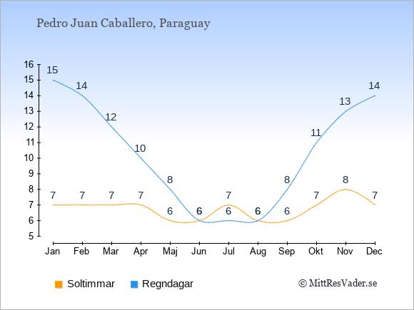 Vädret i Pedro Juan Caballero exemplifierat genom antalet soltimmar och regniga dagar: Januari 7;15. Februari 7;14. Mars 7;12. April 7;10. Maj 6;8. Juni 6;6. Juli 7;6. Augusti 6;6. September 6;8. Oktober 7;11. November 8;13. December 7;14.