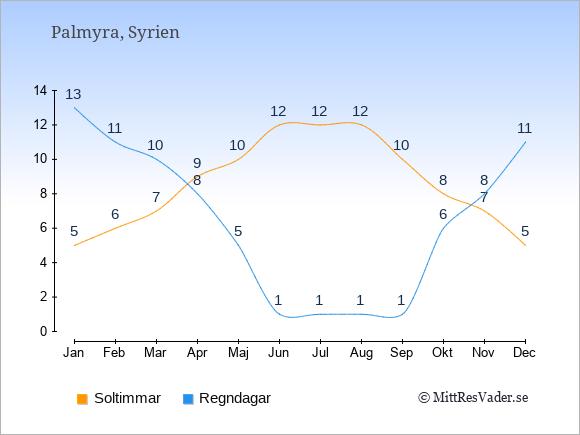 Vädret i Palmyra exemplifierat genom antalet soltimmar och regniga dagar: Januari 5;13. Februari 6;11. Mars 7;10. April 9;8. Maj 10;5. Juni 12;1. Juli 12;1. Augusti 12;1. September 10;1. Oktober 8;6. November 7;8. December 5;11.