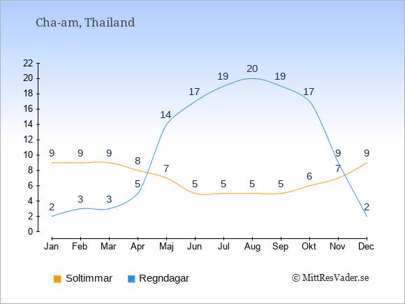 Vädret i Cha-am: Soltimmar och nederbörd.