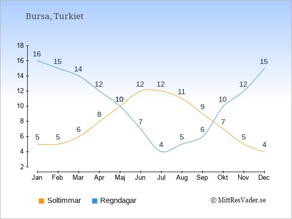 Vädret i Bursa exemplifierat genom antalet soltimmar och regniga dagar: Januari 5;16. Februari 5;15. Mars 6;14. April 8;12. Maj 10;10. Juni 12;7. Juli 12;4. Augusti 11;5. September 9;6. Oktober 7;10. November 5;12. December 4;15.