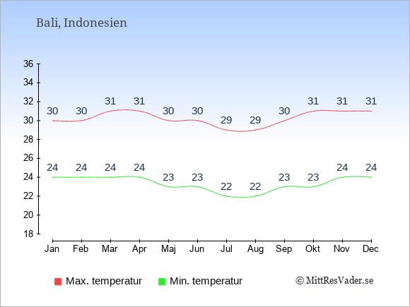Temperaturer på Bali -dag och natt.
