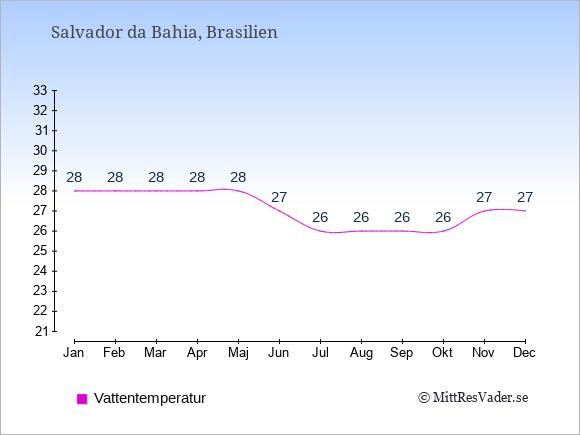Vattentemperatur i Salvador da Bahia Badtemperatur: Januari 28. Februari 28. Mars 28. April 28. Maj 28. Juni 27. Juli 26. Augusti 26. September 26. Oktober 26. November 27. December 27.