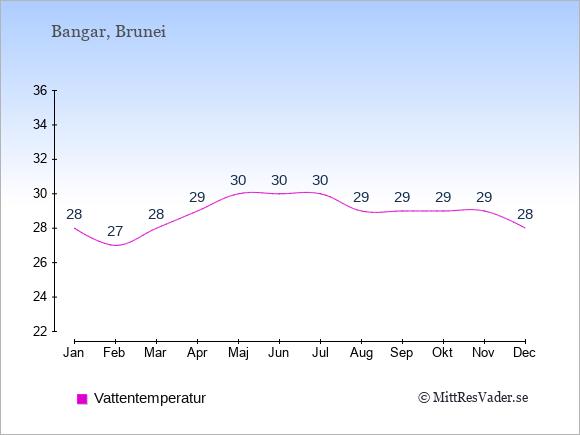 Vattentemperatur i Bangar Badtemperatur: Januari 28. Februari 27. Mars 28. April 29. Maj 30. Juni 30. Juli 30. Augusti 29. September 29. Oktober 29. November 29. December 28.