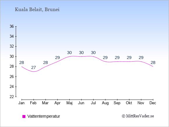 Vattentemperatur i Kuala Belait Badtemperatur: Januari 28. Februari 27. Mars 28. April 29. Maj 30. Juni 30. Juli 30. Augusti 29. September 29. Oktober 29. November 29. December 28.