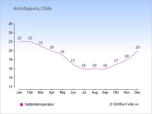 Vattentemperatur i  Antofagasta. Badvattentemperatur.