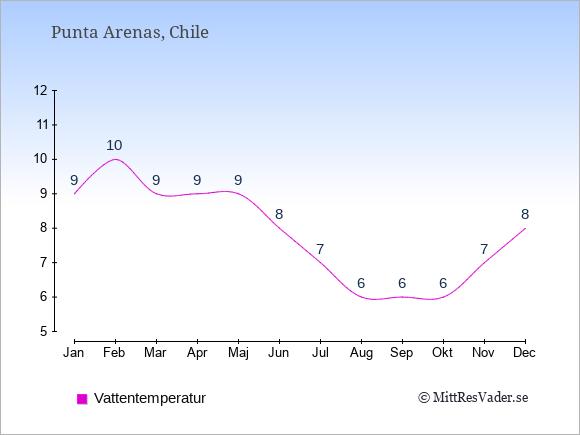 Vattentemperatur i  Punta Arenas. Badvattentemperatur.