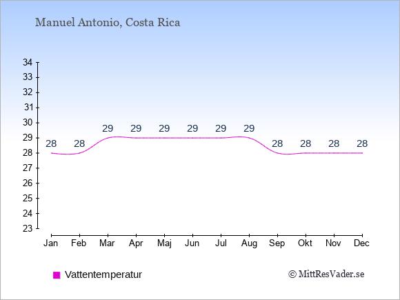Vattentemperatur i Manuel Antonio Badtemperatur: Januari 28. Februari 28. Mars 29. April 29. Maj 29. Juni 29. Juli 29. Augusti 29. September 28. Oktober 28. November 28. December 28.