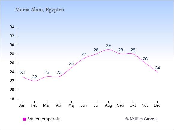 Vattentemperatur i Marsa Alam Badtemperatur: Januari 23. Februari 22. Mars 23. April 23. Maj 25. Juni 27. Juli 28. Augusti 29. September 28. Oktober 28. November 26. December 24.