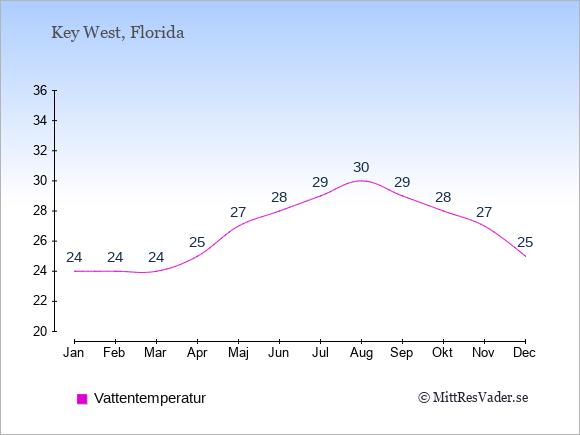 Vattentemperatur i  Key West. Badvattentemperatur.