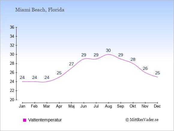 Vattentemperatur i  Miami Beach. Badvattentemperatur.