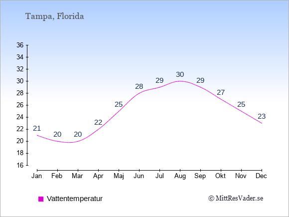 Vattentemperatur i Tampa Badtemperatur: Januari 21. Februari 20. Mars 20. April 22. Maj 25. Juni 28. Juli 29. Augusti 30. September 29. Oktober 27. November 25. December 23.