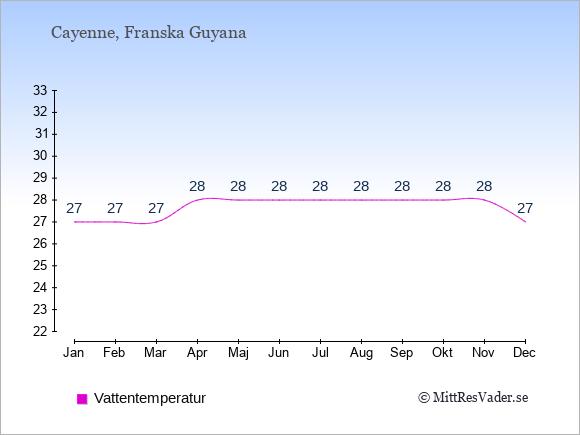 Vattentemperatur i  Franska Guyana. Badvattentemperatur.