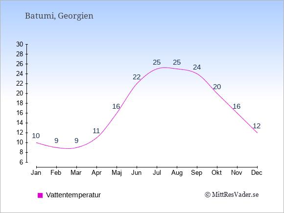 Vattentemperatur i Batumi Badtemperatur: Januari 10. Februari 9. Mars 9. April 11. Maj 16. Juni 22. Juli 25. Augusti 25. September 24. Oktober 20. November 16. December 12.