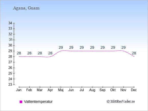Vattentemperatur på  Guam. Badvattentemperatur.
