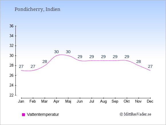 Vattentemperatur i  Pondicherry. Badvattentemperatur.