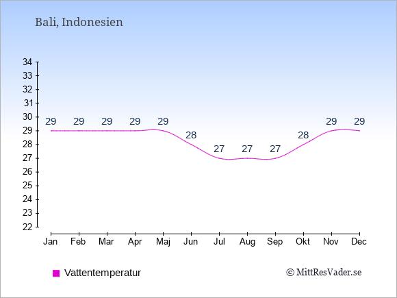 Vattentemperatur på  Bali. Badvattentemperatur.