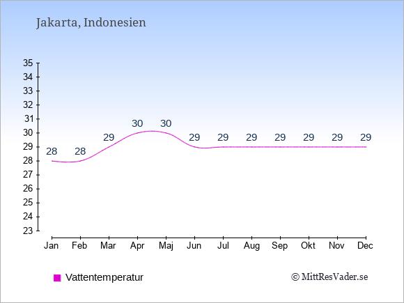 Vattentemperatur i Indonesien Badtemperatur: Januari 28. Februari 28. Mars 29. April 30. Maj 30. Juni 29. Juli 29. Augusti 29. September 29. Oktober 29. November 29. December 29.