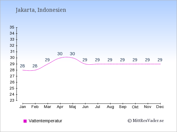 Vattentemperatur i  Indonesien. Badvattentemperatur.