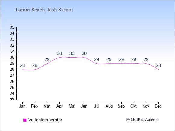 Vattentemperatur i Lamai Beach Badtemperatur: Januari 28. Februari 28. Mars 29. April 30. Maj 30. Juni 30. Juli 29. Augusti 29. September 29. Oktober 29. November 29. December 28.