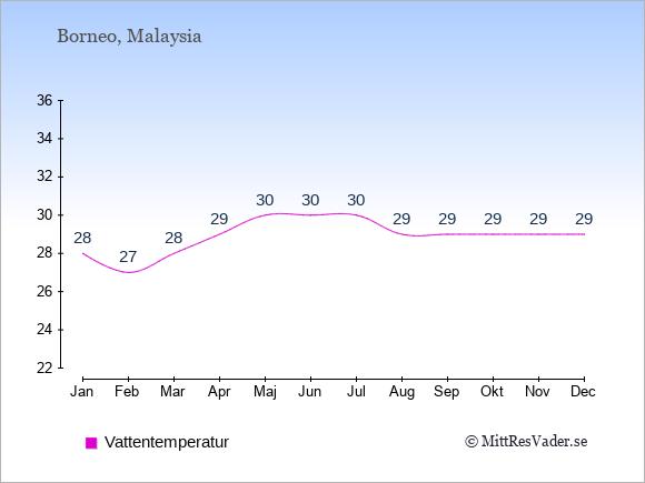 Vattentemperatur på  Borneo. Badvattentemperatur.