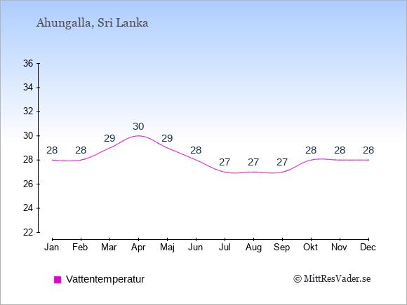 Vattentemperatur i Ahungalla Badtemperatur: Januari 28. Februari 28. Mars 29. April 30. Maj 29. Juni 28. Juli 27. Augusti 27. September 27. Oktober 28. November 28. December 28.