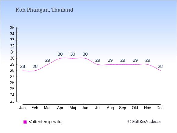 Vattentemperatur på Koh Phangan Badtemperatur: Januari 28. Februari 28. Mars 29. April 30. Maj 30. Juni 30. Juli 29. Augusti 29. September 29. Oktober 29. November 29. December 28.