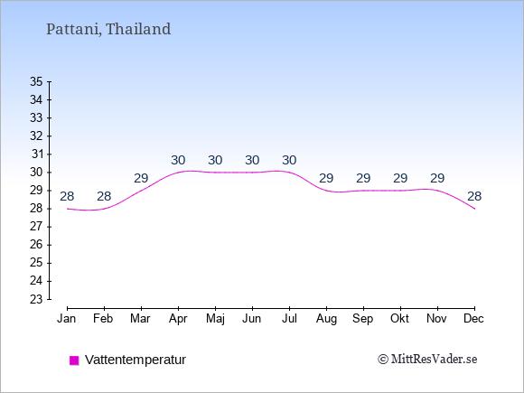 Vattentemperatur i Pattani Badtemperatur: Januari 28. Februari 28. Mars 29. April 30. Maj 30. Juni 30. Juli 30. Augusti 29. September 29. Oktober 29. November 29. December 28.