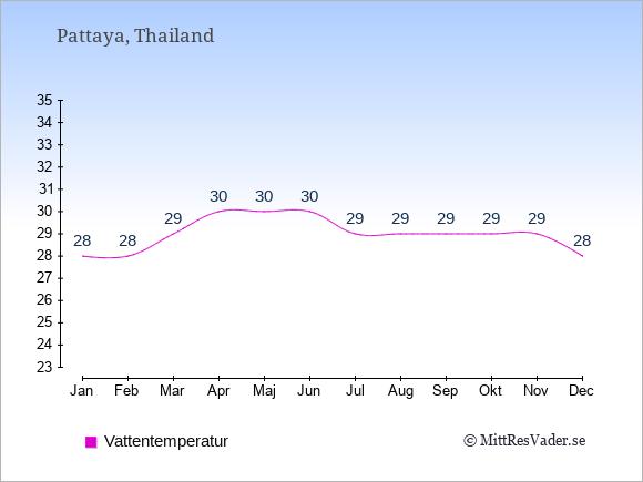 Vattentemperatur i Pattaya Badtemperatur: Januari 28. Februari 28. Mars 29. April 30. Maj 30. Juni 30. Juli 29. Augusti 29. September 29. Oktober 29. November 29. December 28.